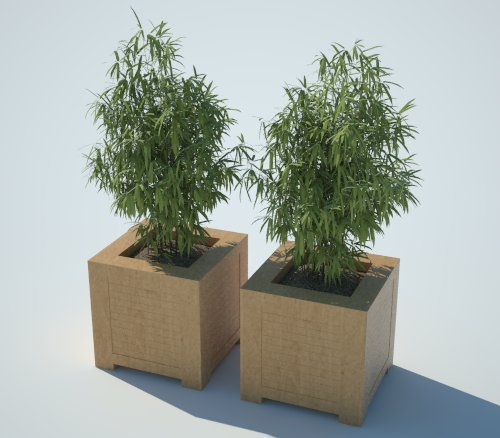 Xfrog | Trees | Potted...