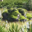 """Image of the Day for 2/6/2016: """"Mossy River Rocks"""" by Massi San"""