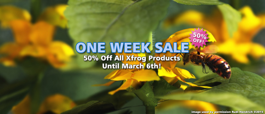 One Week Sale: 50% Off Until March 6th!