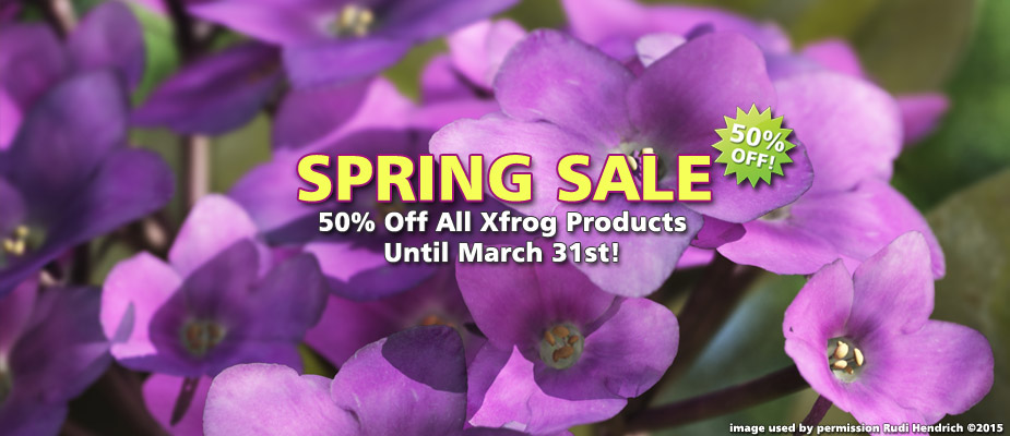 Spring Sale: 50% Off Until March 31st!
