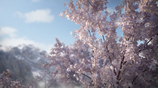 Free Blossoming Scene
