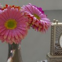 """Image of the Day for 1/29/2016: """"Gerberas in a Vase"""""""