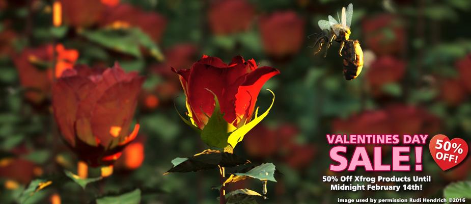 Valentine's Day Sale: Save 50%!