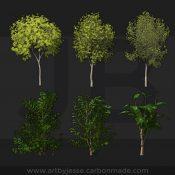 trees-1-jesse-barratt