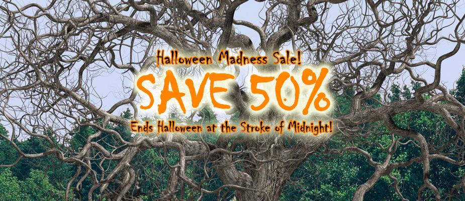 Halloween Sale – 50% Off Until October 31st!